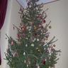 Karácsony váró 2010.